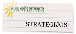 strategijanaujas